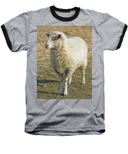 Sheep Baseball T-Shirt