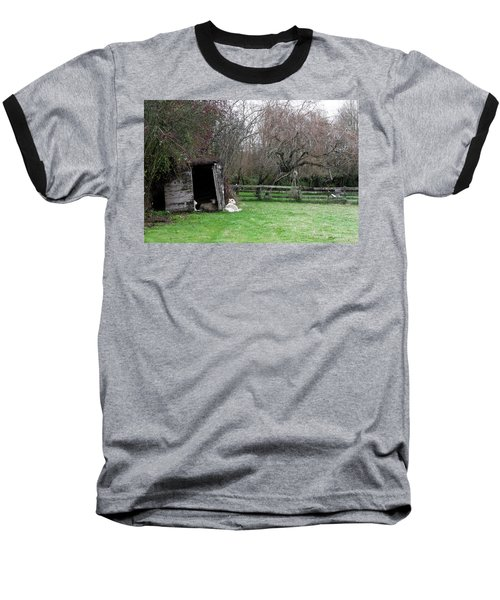 Sheep Shed Baseball T-Shirt