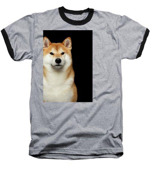 Shiba Inu Baseball T-Shirt by Sergey Taran