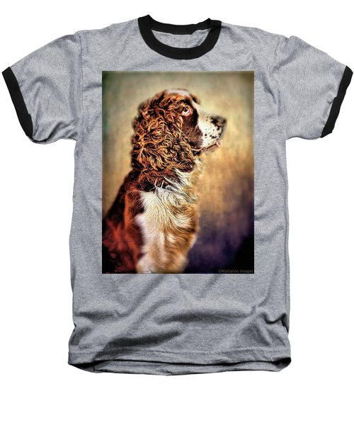 Baseball T-Shirt featuring the photograph Shiloh, English Springer Spaniel by Wallaroo Images