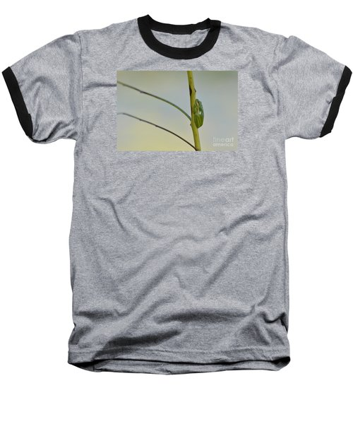 Baseball T-Shirt featuring the photograph  Doris Day Shining Bright by Kathy Gibbons