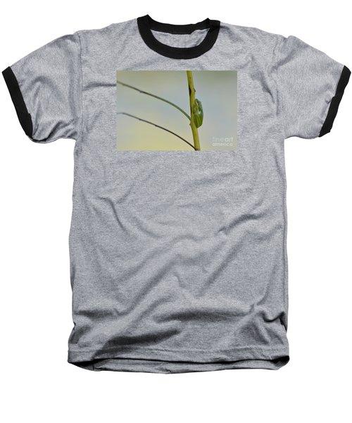Doris Day Shining Bright Baseball T-Shirt by Kathy Gibbons