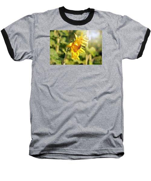 Shining Sun Baseball T-Shirt
