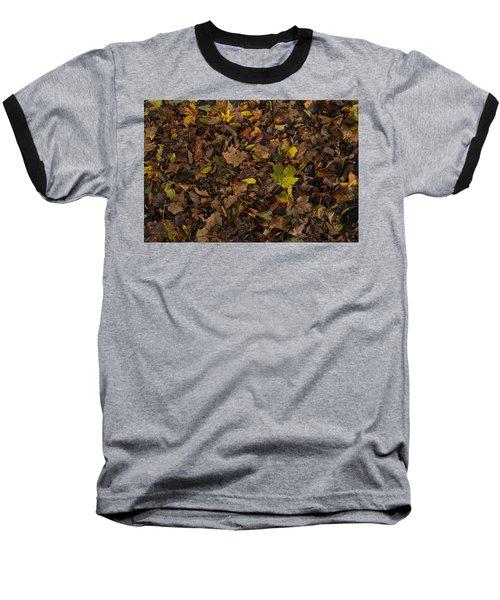 Shoop Shoop Baseball T-Shirt by Tim Good