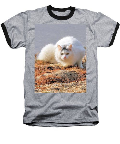Baseball T-Shirt featuring the photograph Shore Kitty by Debbie Stahre