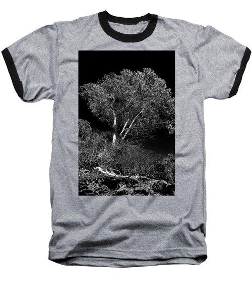 Shoreline Tree Baseball T-Shirt