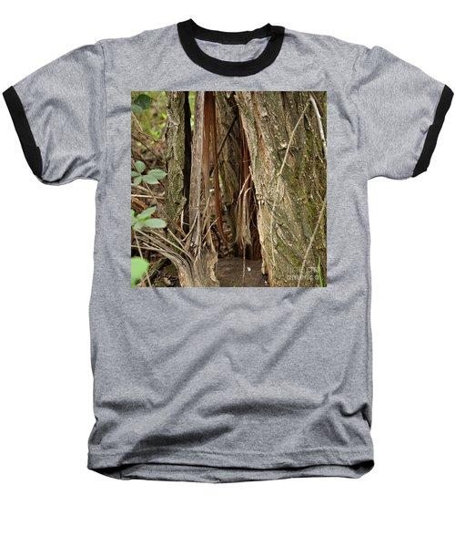Shredded Tree Baseball T-Shirt