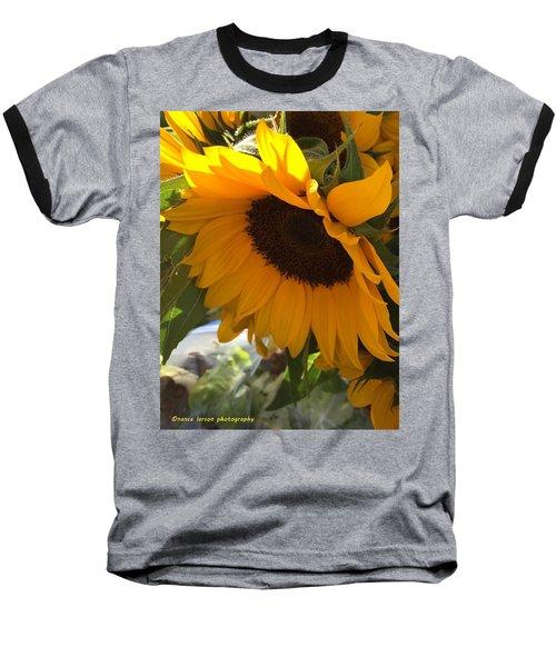 Shy Sunflower Baseball T-Shirt