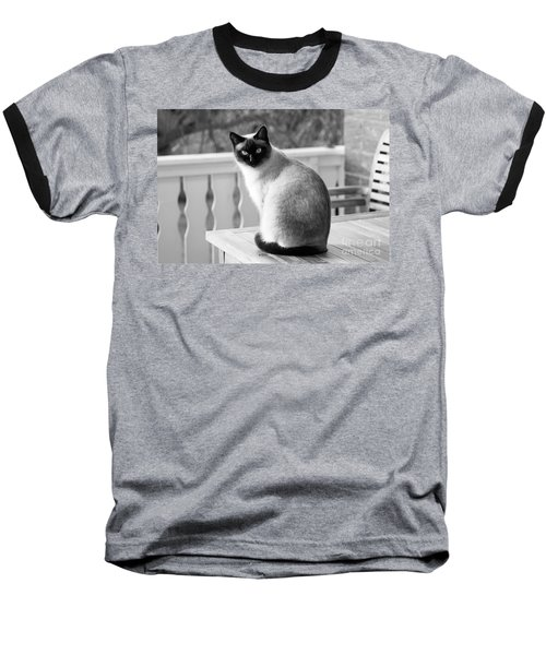 Siamese Cat Baseball T-Shirt