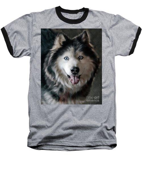 Siberian Husky Baseball T-Shirt