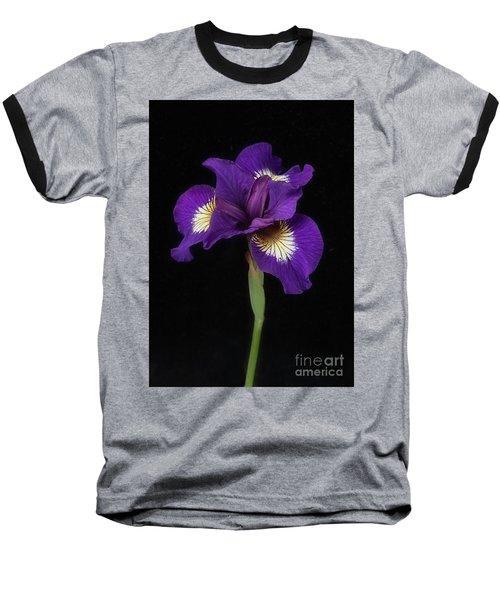 Siberian Iris Baseball T-Shirt