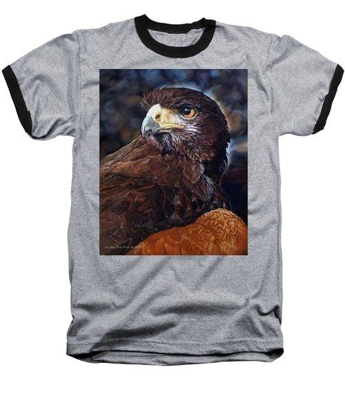 Sig The Harris Hawk Baseball T-Shirt by Linda Becker