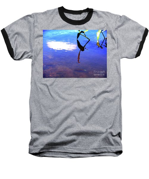 Silhouette Aquatic Fish Baseball T-Shirt