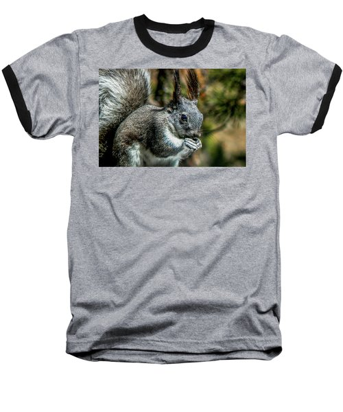 Silver Abert's Squirrel Close-up Baseball T-Shirt