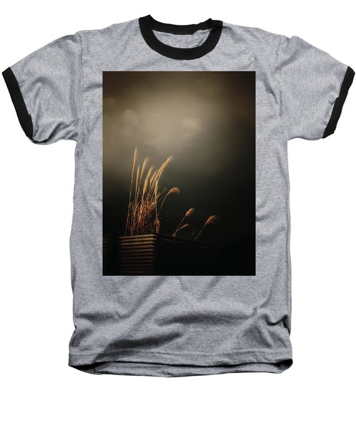 Silver Grass Baseball T-Shirt by Rachel Mirror