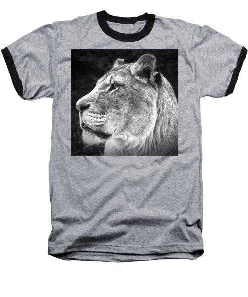 Silver Lioness - Squareformat Baseball T-Shirt by Chris Boulton