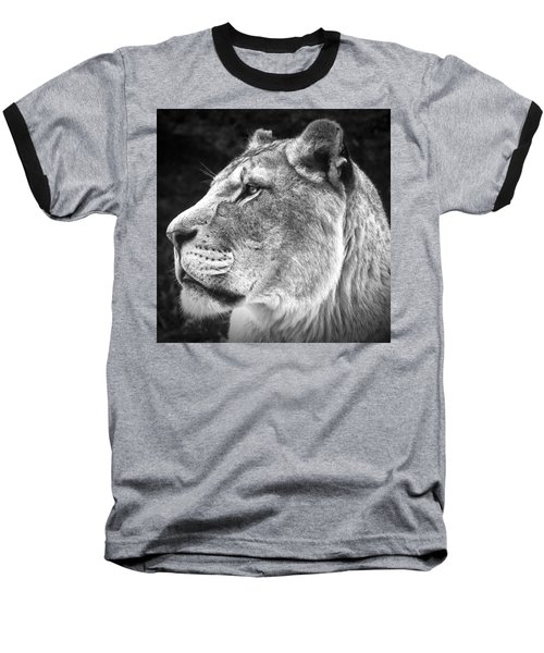 Silver Lioness - Squareformat Baseball T-Shirt