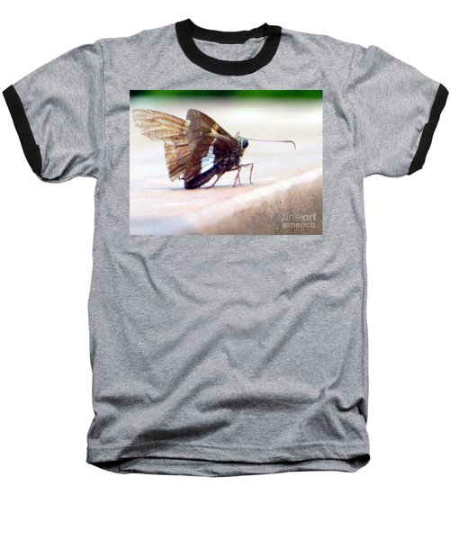 Silver Spotted Skipper Butterfly Baseball T-Shirt