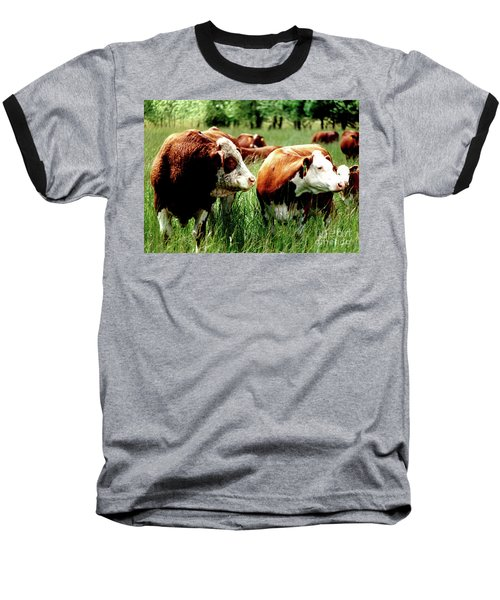 Baseball T-Shirt featuring the photograph Simmental Bull And Hereford Cow by Larry Campbell