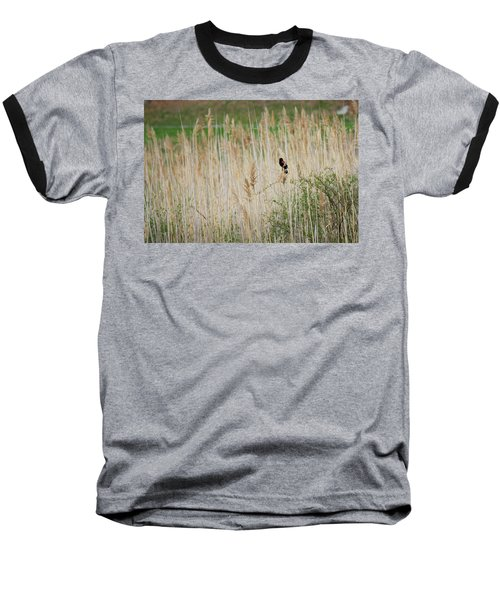 Baseball T-Shirt featuring the photograph Sing For Spring by Bill Wakeley