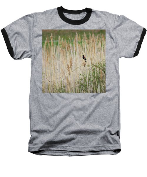 Baseball T-Shirt featuring the photograph Sing For Spring Square by Bill Wakeley
