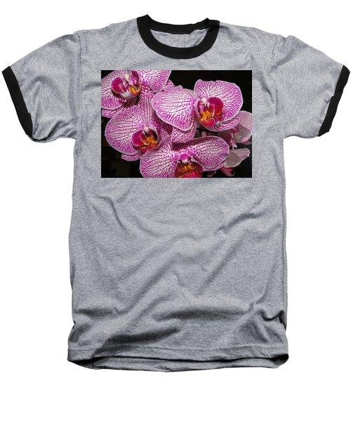 Singapore Orchid Baseball T-Shirt