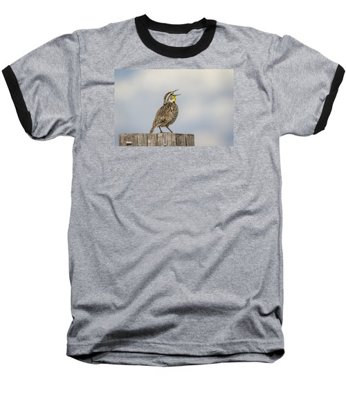 Singing A Song Baseball T-Shirt by Thomas Young