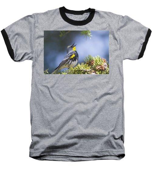 Singing Audubon's Warbler Baseball T-Shirt