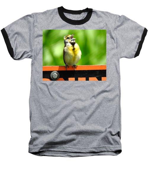 Singing Dickcissel Baseball T-Shirt