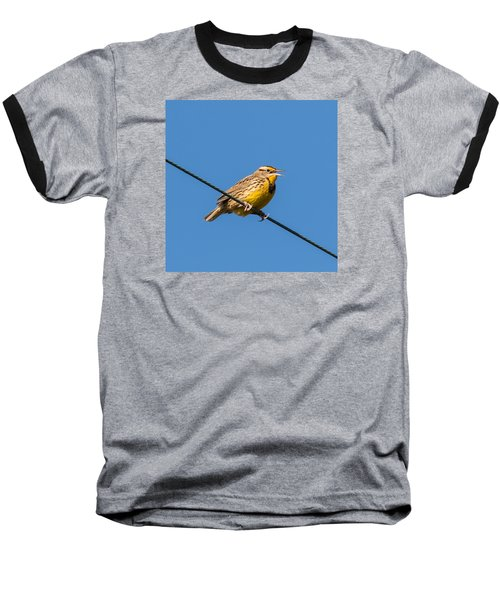 Singing On The Wire Baseball T-Shirt
