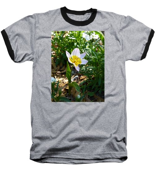 Baseball T-Shirt featuring the photograph Single Flower - Simplify Series by Carla Parris