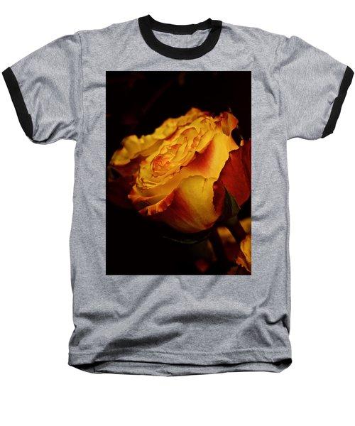 Single March Vintage Rose Baseball T-Shirt by Richard Cummings