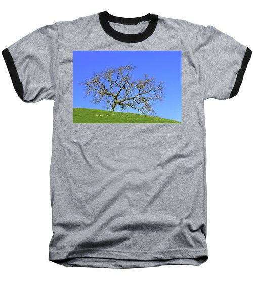Baseball T-Shirt featuring the photograph Single Oak Tree by Art Block Collections