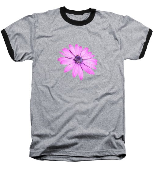 Single Pink African Daisy Baseball T-Shirt by Tracey Harrington-Simpson