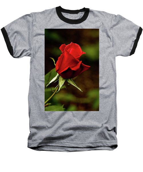 Single Red Rose Bud Baseball T-Shirt by Jacqi Elmslie