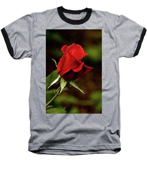 Single Red Rose Bud Baseball T-Shirt