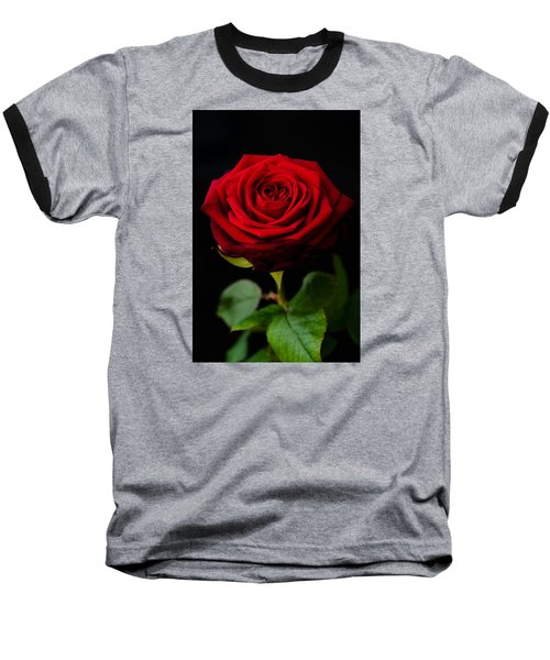 Single Rose Baseball T-Shirt by Miguel Winterpacht