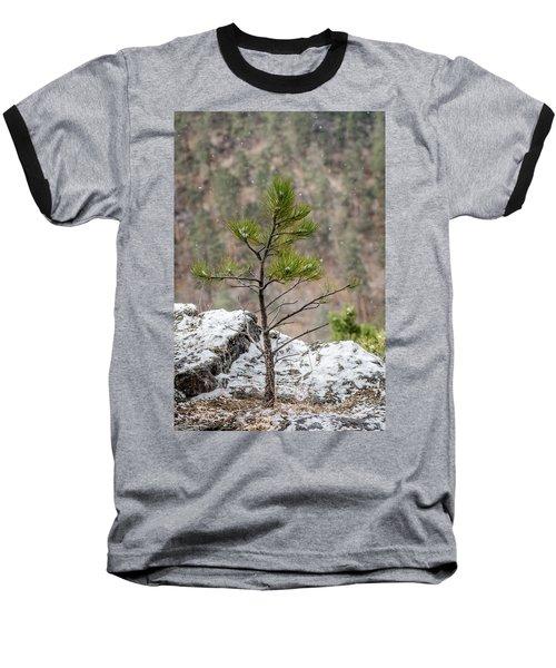 Single Snowy Pine Baseball T-Shirt