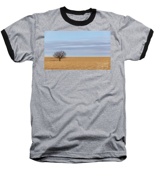Single Tree In Large Field With Cloudy Skies Baseball T-Shirt