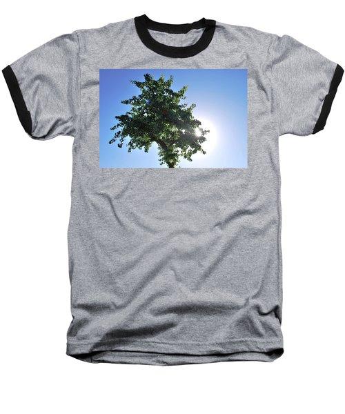 Single Tree - Sun And Blue Sky Baseball T-Shirt
