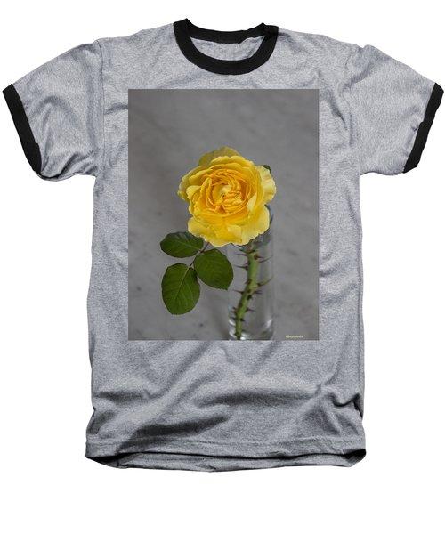 Single Yellow Rose With Thorns Baseball T-Shirt