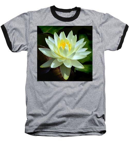 Single Yellow Water Lily Baseball T-Shirt by Kathleen Stephens