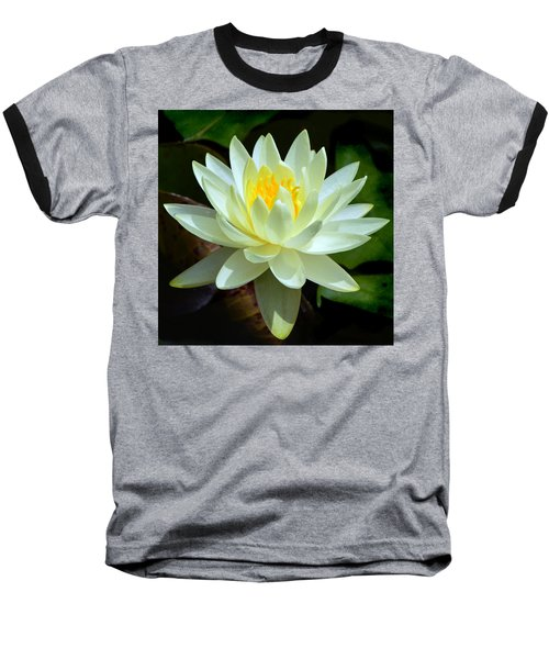 Single Yellow Water Lily Baseball T-Shirt