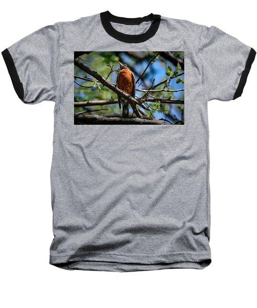 Sir Robin Baseball T-Shirt