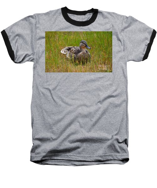 Sitting Duck Baseball T-Shirt