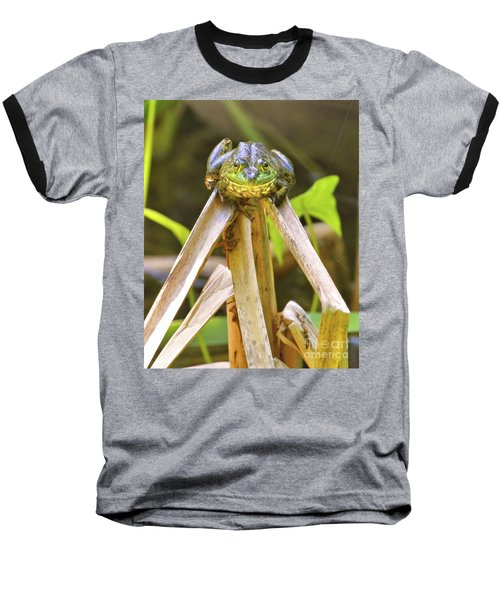 Baseball T-Shirt featuring the photograph Sitting On Top Of The World by Debbie Stahre