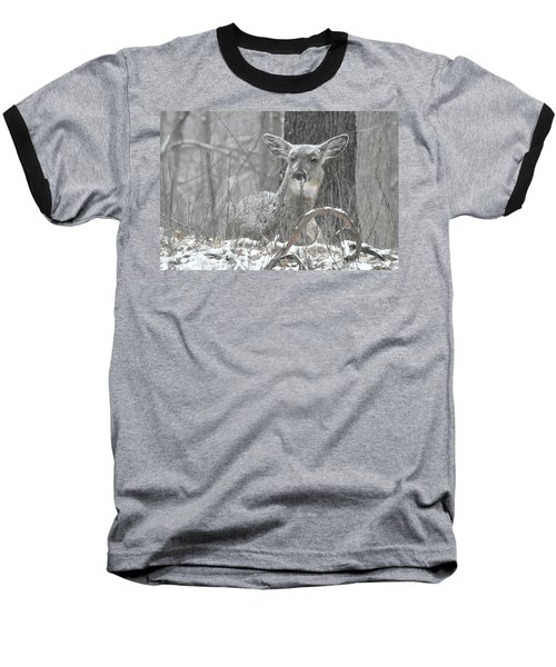 Baseball T-Shirt featuring the photograph Sitting Out The Storm by Michael Peychich