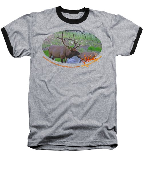 Six Point Bull Elk In Colorado Baseball T-Shirt