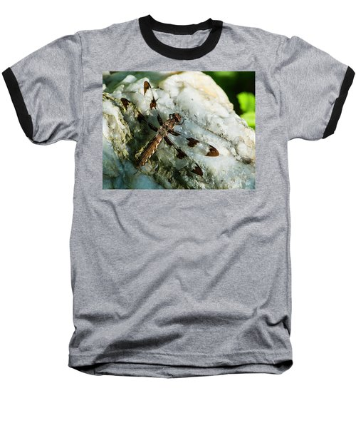 Six Spotted Dragonfly Baseball T-Shirt