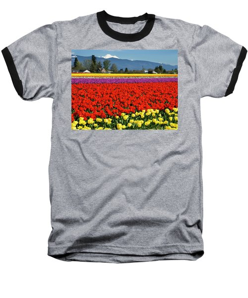 Skagit Valley Tulip Fields Baseball T-Shirt